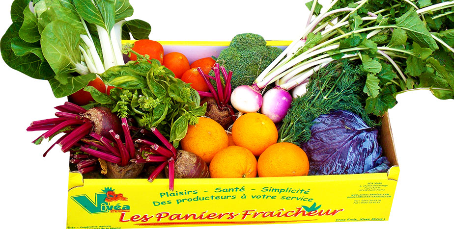 fruits-legumes-vivea-panier2